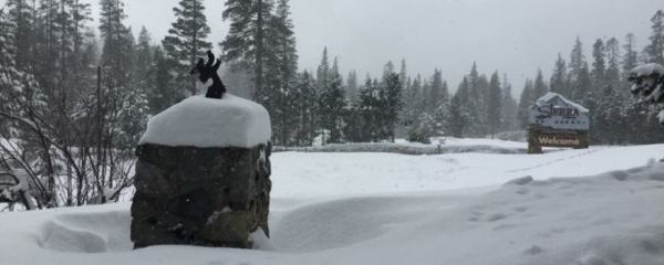 Sierra snow survey