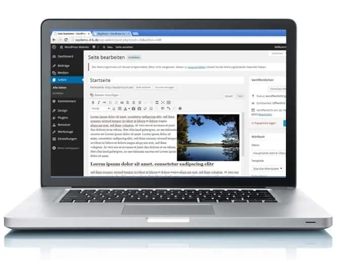 Peter Fürsicht - WordPress Spezialist von max2-consulting