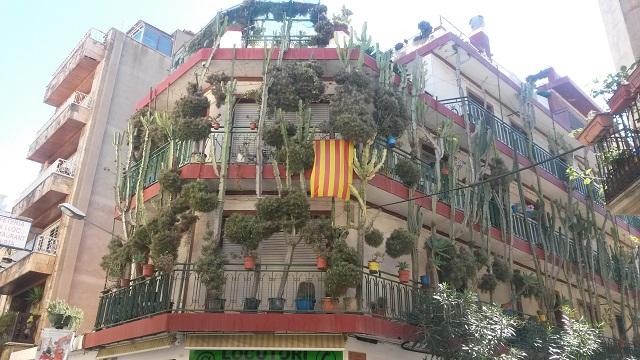 Дом с кактусами. Калелья, Барселона, октябрь 2016.