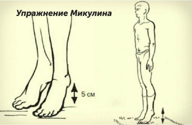 Упражнение Микулина