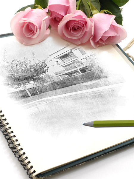 """Carta abierta a """"quiero ver la casa"""""""