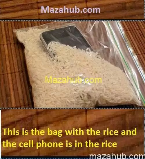 Recover cell phone water damaged