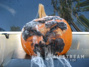 Rotten pumpkin Airstream