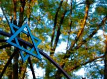 Jewish club restarted after a year-long hiatus