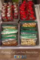 Packing Lunch Ideas for Kids - Ideas for Making Lunch Packing Easier