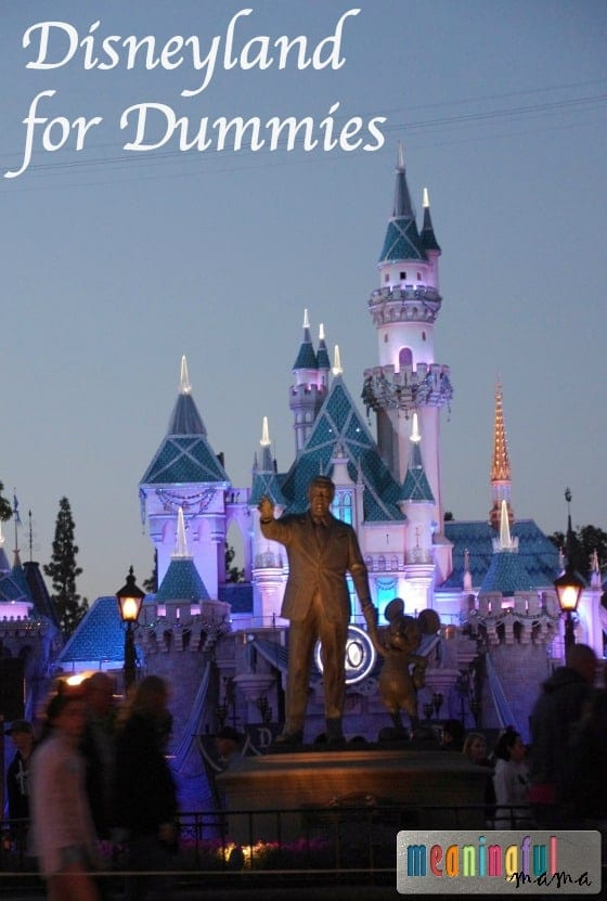 Disneyland for Dummies: Part One