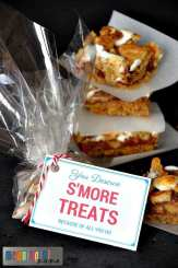 S'More Appreciation Treats for Teachers Mar 10, 2016, 8-017