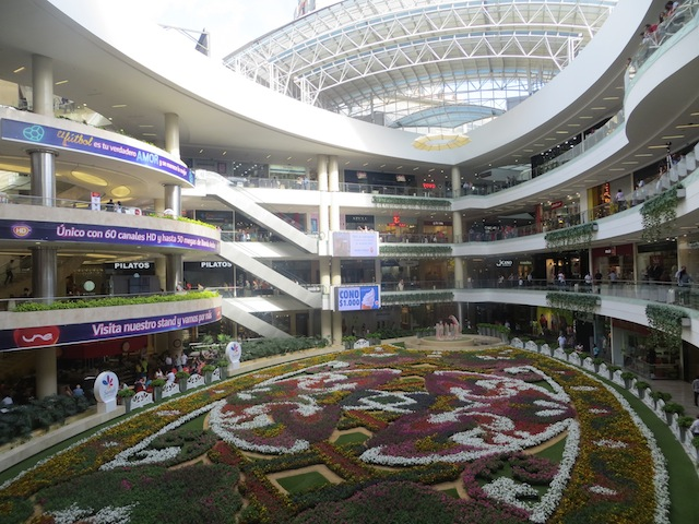 2014 flower carpet display in Santafé with over 150,000 flowers
