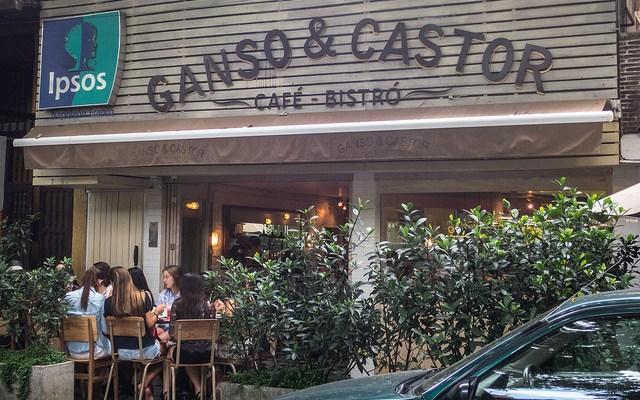 Ganso y Castor
