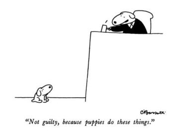 """Not guilty, because puppies do these things."" - New Yorker Cartoon"