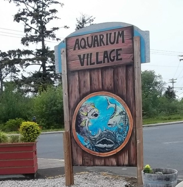 Aquarium Village in south beach, Newport | Places I Have Been | Pinte