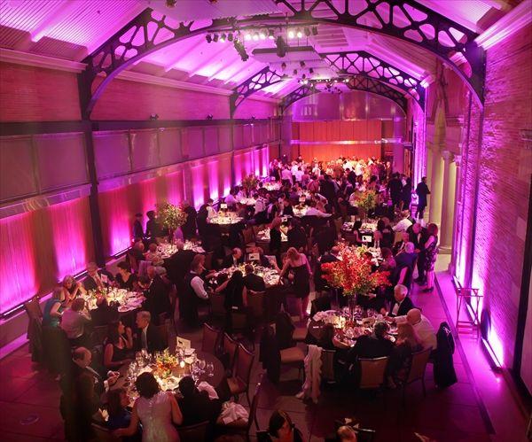 bronx zoo wedding   Google Search | Wedding | Pinterest