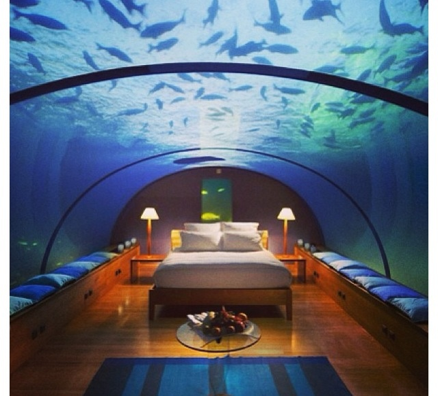 Cool Fish Tanks For Bedrooms Bedroom Cool Houses Pinterest Aquarium Be Awesome And