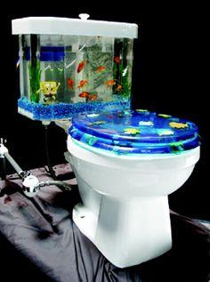 Salt Water fish tanks on Pinterest | Salt Water Fish, Aquarium and