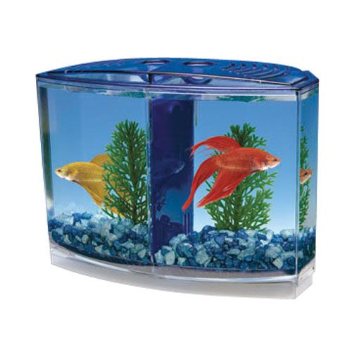 Betta Bowfront Double Tank Kit