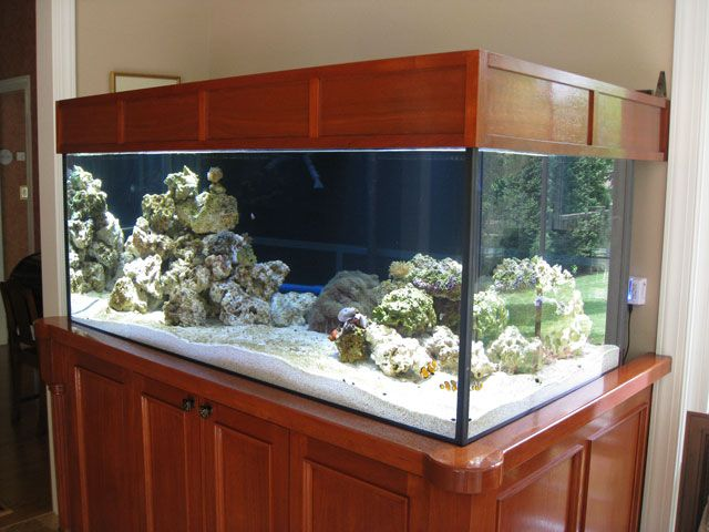 of the current ultra modern fish tank stand could look this nice