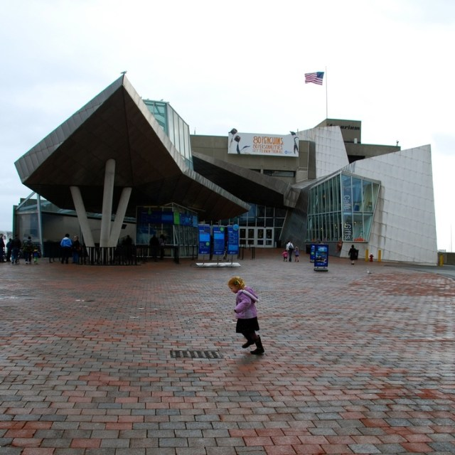 New England Aquarium, Boston, MA | Boston MA | Pinterest