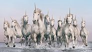 Podsumowanie Tygodnia 5.01 - 11.01.2016   Unicorns Are a Bold New Power Source in This Epic British Utility Ad