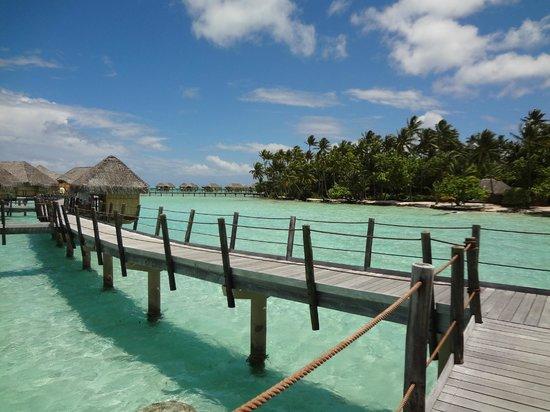le-taha-a-island-resort.jpg