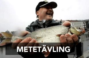 metetavling-310