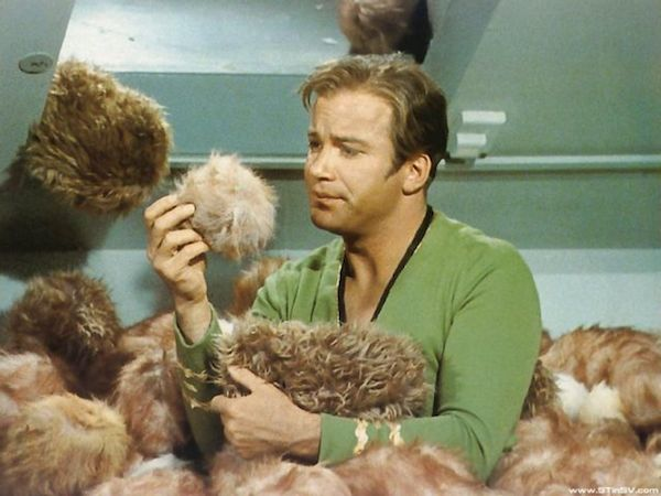 captain-kirk-buried-in-tribbles
