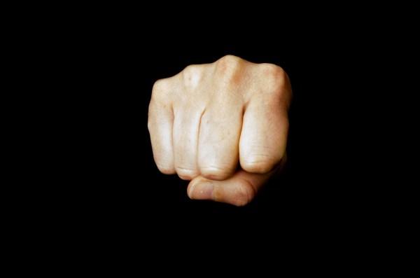 fist (1)