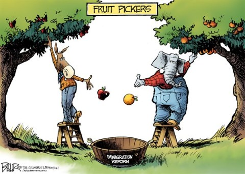 Nate Beeler - The Columbus Dispatch - Immigration Reform COLOR - English - republican, democrat, immigration, reform, fruit, picker, tree, apple, orange, congress, senate, house, politics, conservative, liberal, immigrant