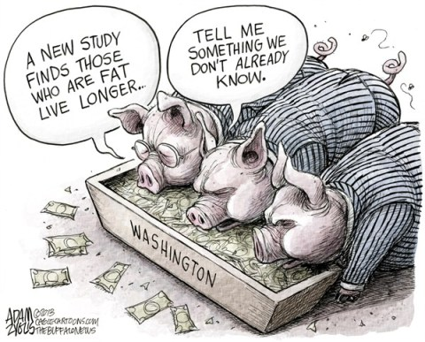 Adam Zyglis - The Buffalo News - Washington Pork Projects COLOR - English - washington, dc, politics, trough, pigs, pork, spending, government, debt, earmarks, projects, districts, incumbents, study, fat, overweight, health, mortality, rate