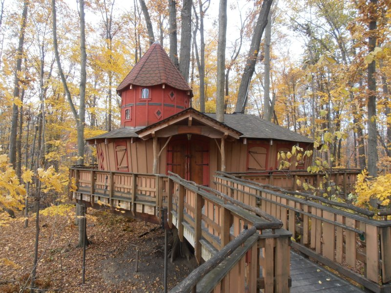 Large Of Treehouse Masters Cost