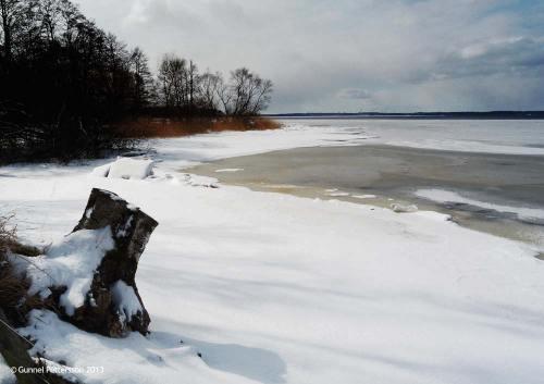 Ny is på Ringsjön