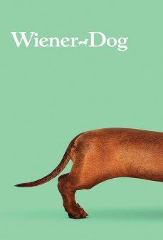 تحميل فلم Wiener-Dog كلب الداشهند اونلاين