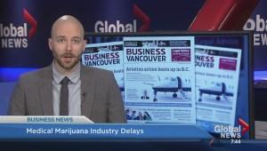 BIV: Medicinal marijuana industry delays