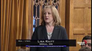 Lisa Raitt upset at Liberal government for delaying return to House