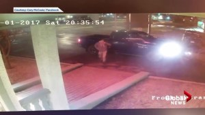 Caught on camera: Surprise headbutt from deer outside B.C. hotel