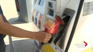 Gas prices to fall after a weekend hike