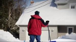 Record snowfall blasts Newfoundland and Labrador