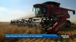 Feds mull cutting grain farmer tax deferral