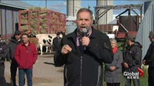 Trade agreement involving Canada and eleven other nations has Canadian dairy farmers worried