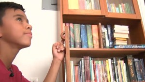 Mailman makes worldwide plea for books to give to 12-year-old boy