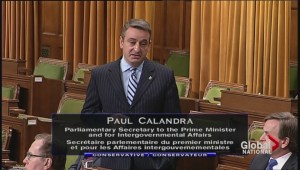 Paul Calandra's tearful QP apology