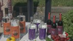 Event liquor licensing just got easier in BC