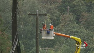 Closer look at B.C.'s power problems three days after storm