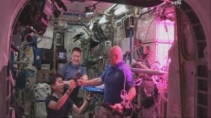 RAW: Astronauts aboard ISS taste lettuce grown in space