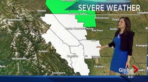 Rainfall, snowfall warnings in place for areas of central Alberta