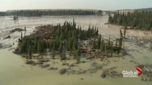 Environmental impact of toxic sludge on BC fisheries