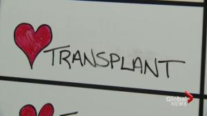 One team, 24 hours and 3 heart transplants at St. Paul's Hospital