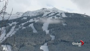Whistler Blackcomb reports highest number of visits in resort history