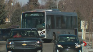 Lethbridge continues to test new busses for future fleet