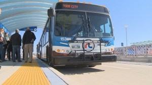 Steeves takes aim at rapid transit