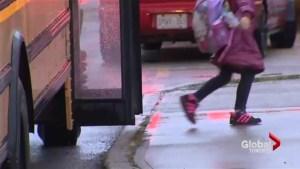 School bus strike averted